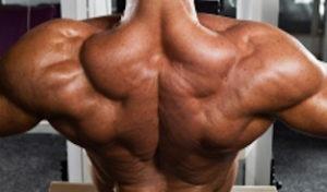 allenamento dei dorsali eusebio roberto 3